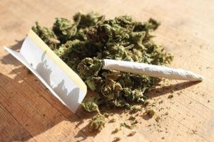 72317_150213p8cannabis